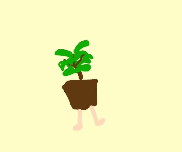 Plant with legs??