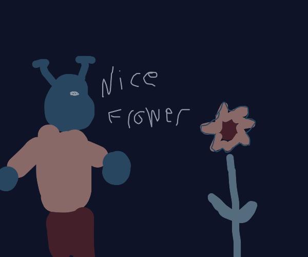Shrek says nice flower to an orange flower