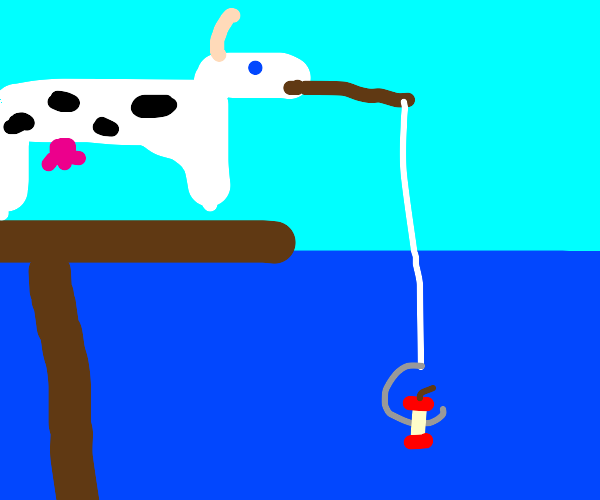 Cow fishing with an apple core