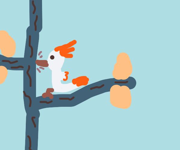 Woodpecker on a blue tree