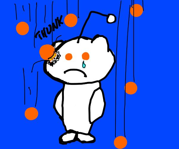 The Reddit alien cries as it rains oranges