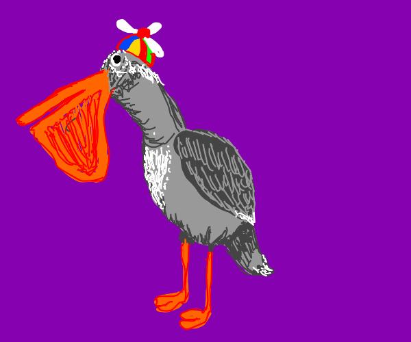 Grey Pelican Wears Propeller Hat