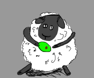sheep-eating avocado