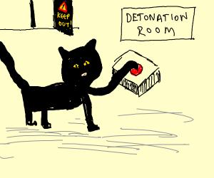 Big cat sets off bomb