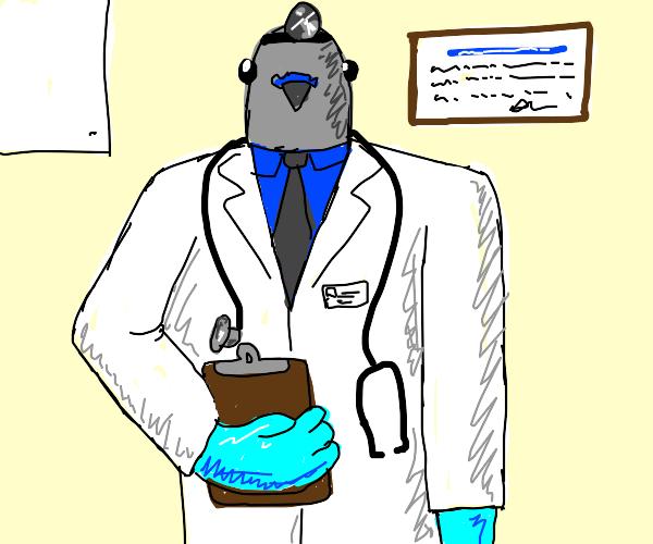 Doctor pidgeon