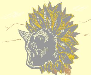 A cat sunflower