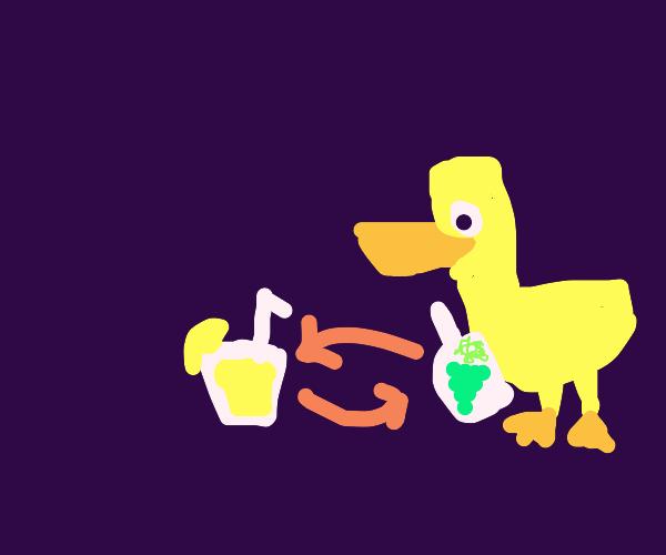 duck trade a bottle of grapes for lemonade