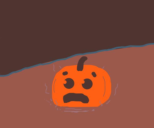 The pumpkin has landed! (In lava it seems)