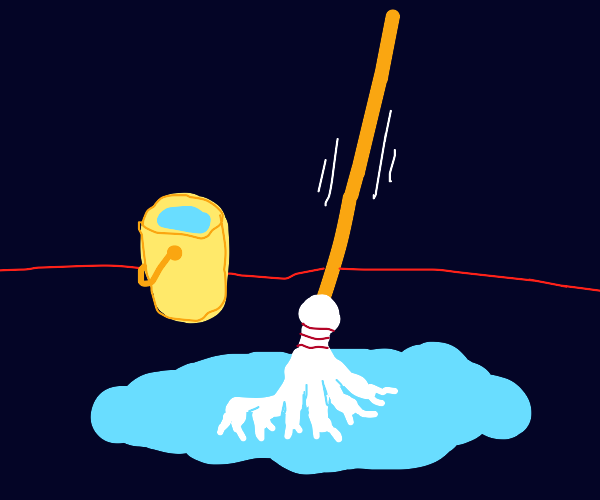 Mop cleaning up puddle