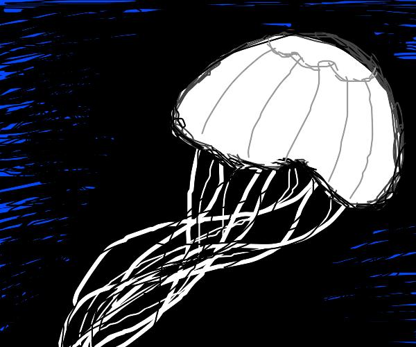 walter white jellyfish