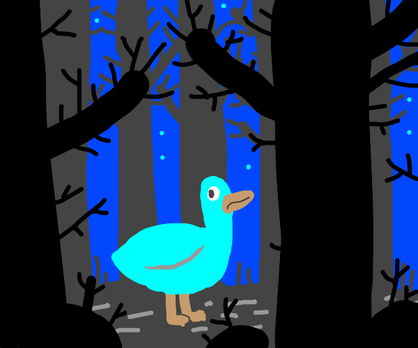 duck in a forest