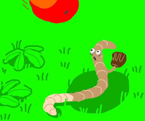 worm catching fruit