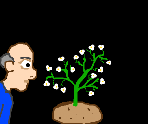 a man sniffing a flowering potato