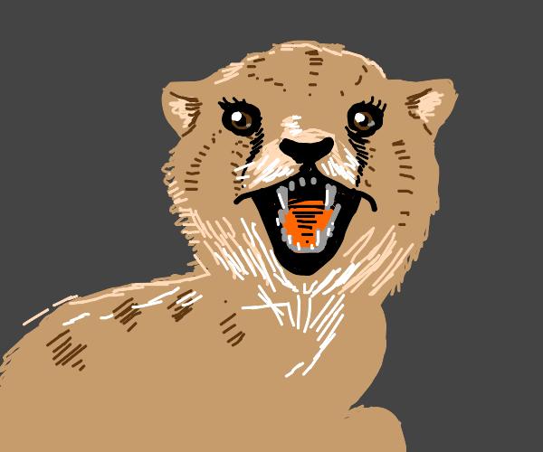 Cute Cheetah