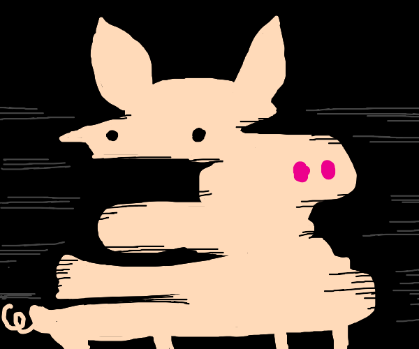 distorted pig