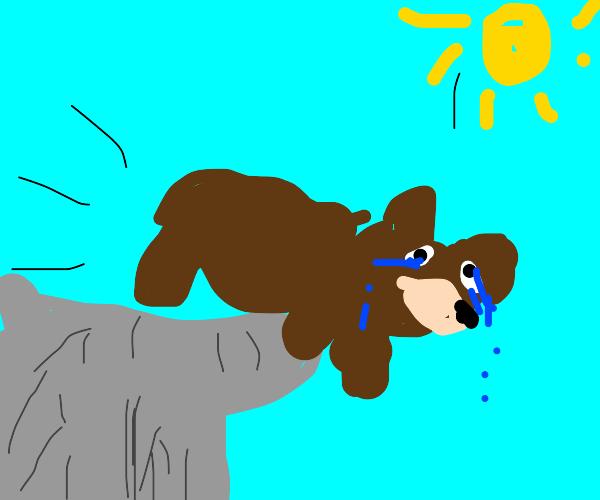 sacrificial bear