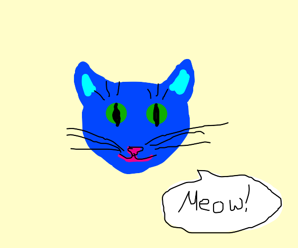 """Blue cat says """"Meow!"""""""