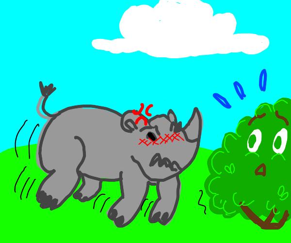 Rhino attacks a bush