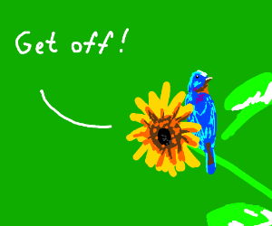 This bluebird PISSES SUNFLOWERS OFF.