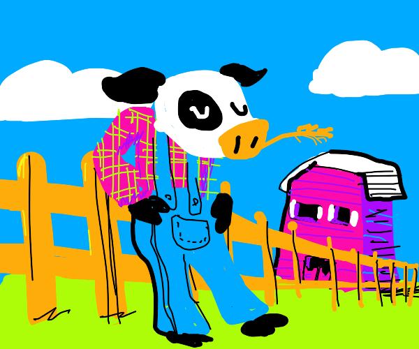 cow stole the farmer's identity
