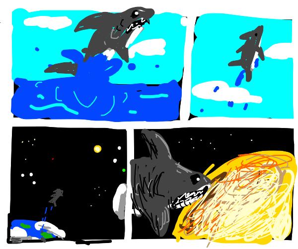 Shark leaps out of sea towards sun