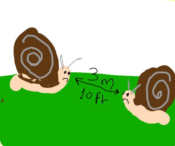Social distancing Snails