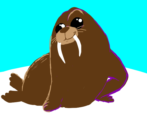 walrus pulls a sassy pose