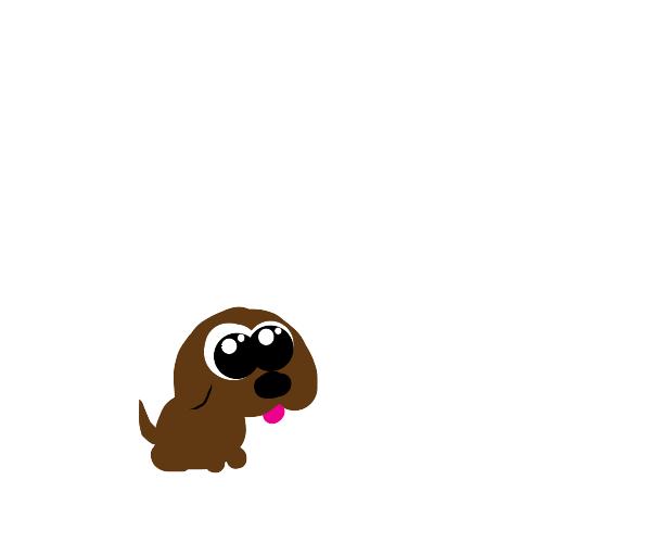 little woof