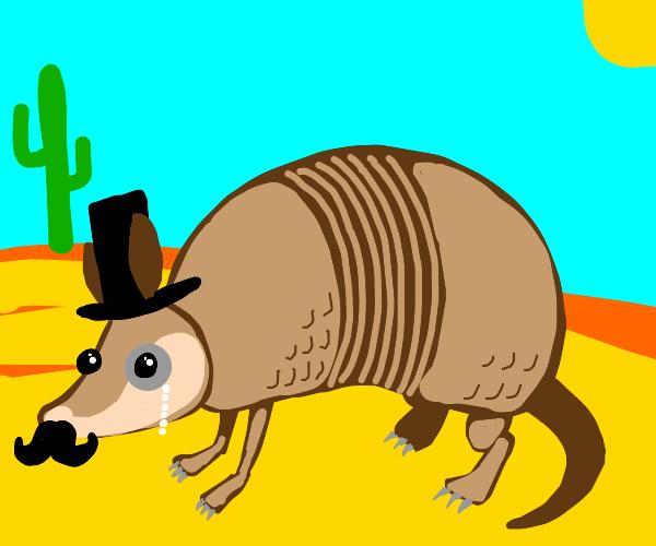 fancy armadillo