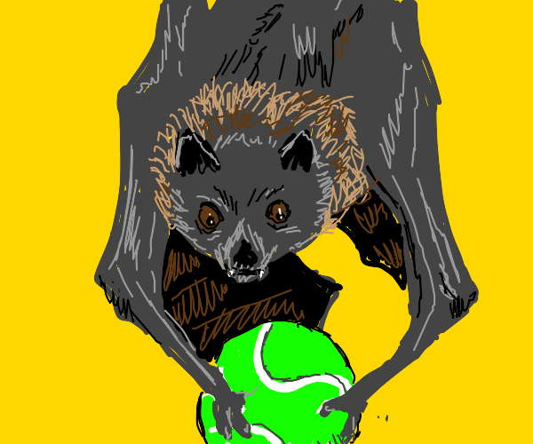 Bat play with a ball