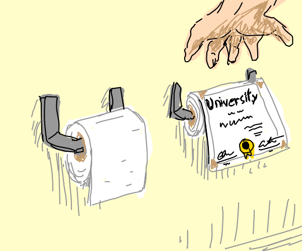 MY DEGREE IS ONLY USEFUL AS TOILET PAPER