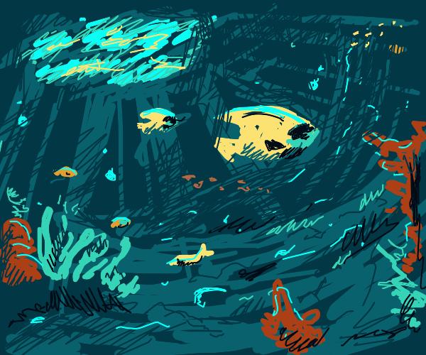 Cool underwater landscape