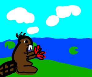 Beaver wearing Gloves