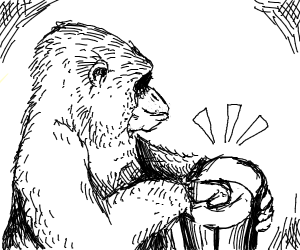 Ape on the bongos
