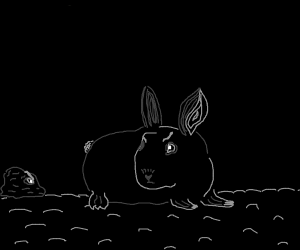 Rabbit and rock having staring contest