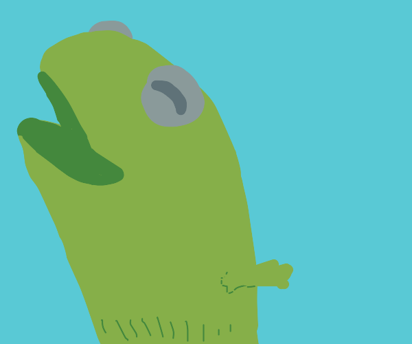 Kermit the frog sock puppet