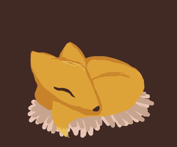 Fox in a nest