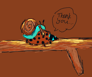 A Snail drawing on a bug