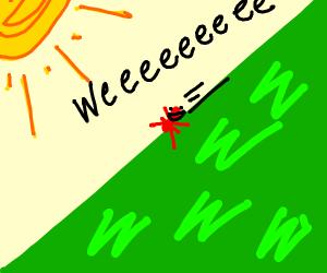 Ant named Mr.Toast slides down hill