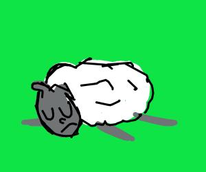 sheep is sad