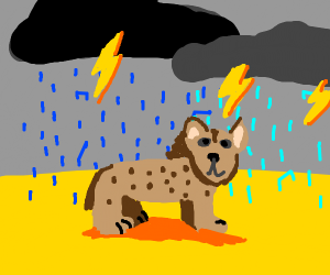 Hyena in a Storm