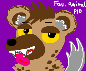 Fav Animal PIO (Dog/Cat!)