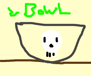 Skull in a Bowl