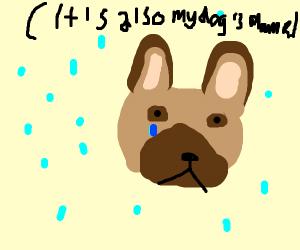 Sad Pepe in the Rain