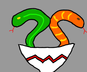 Two snakes in a bowl