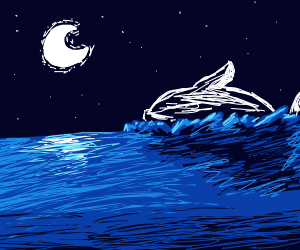 Humpback whale at night