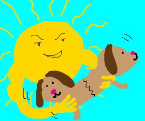 Sun likes bonding puppies.