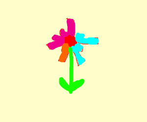 Flower but with socks for petals