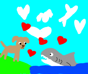 Shark and dog fall in love