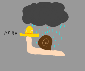Mexican snail out in the rain